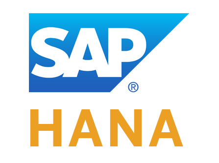 SAP HANA [BIG DATA]